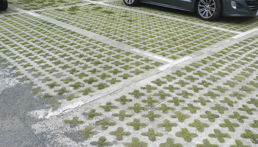 Domestic Driveways With Sustainable Grass Permeable Paving