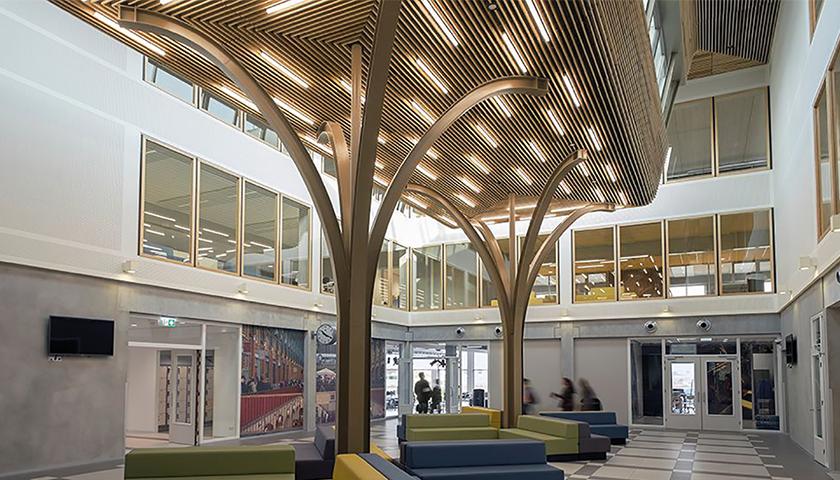 interior wood ceilings