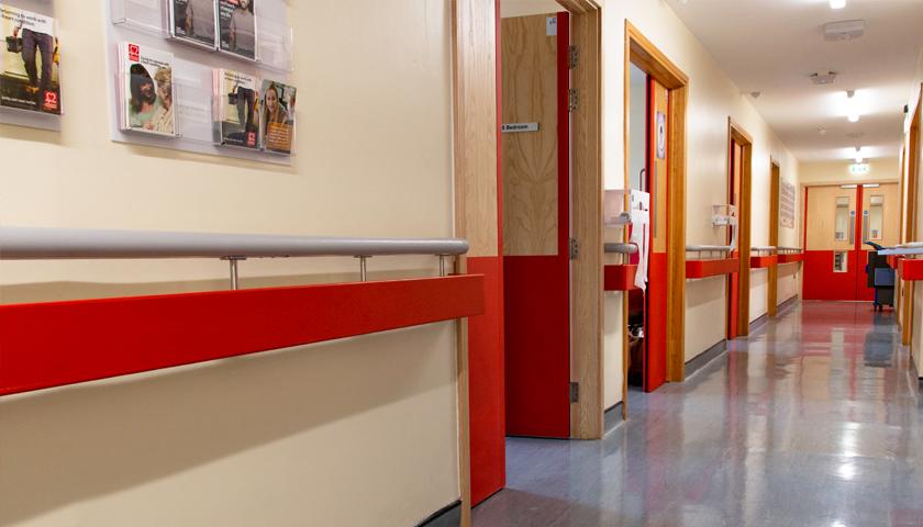 twin handrails